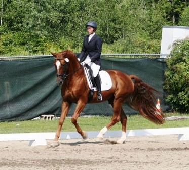 WERBELLIN: Young Rider Champion