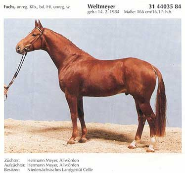 Weltmeyer